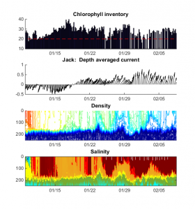 Time-series of Jack's measurements
