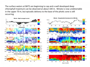 Time series of the water column at BATS (0-300 m)