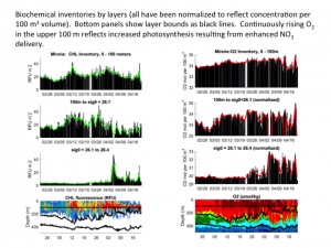 Chlorophyll and dissolved oxygen inventories at BATS
