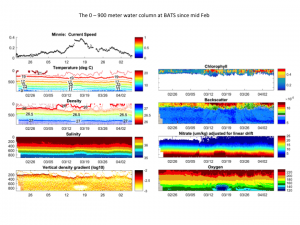 Time series of the water column at BATS (0-900 m)
