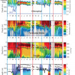 Time series of glider measurements
